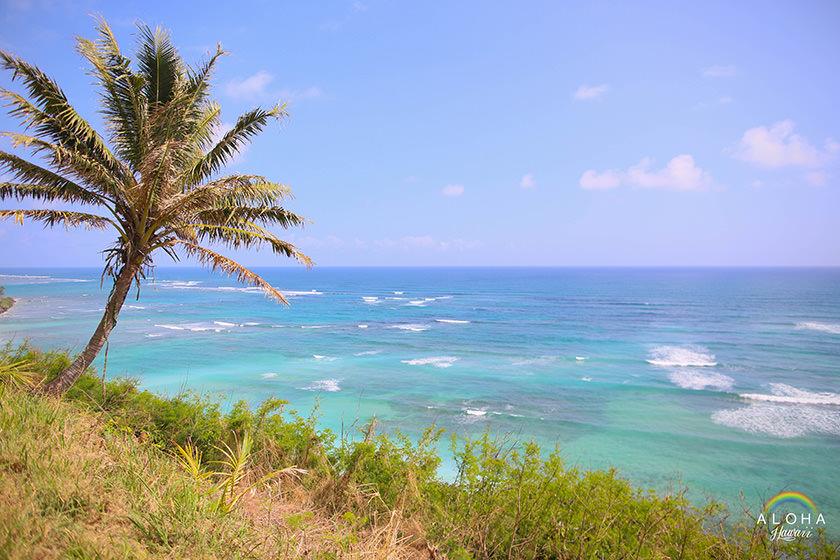hawaii-(34)