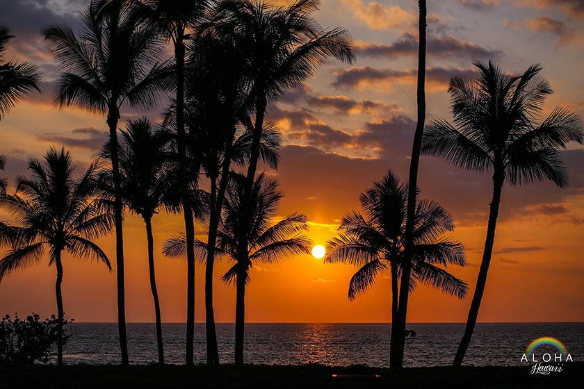 hawaii-(61)
