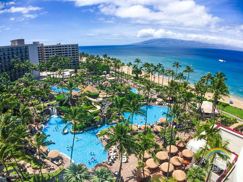 hawaii-(91)