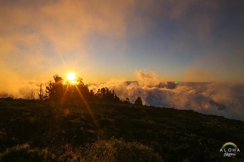 hawaii-(95)