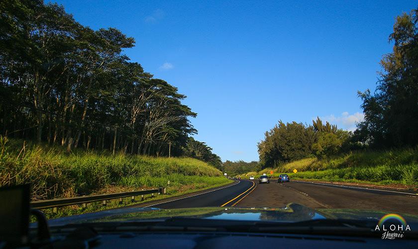 hawaii-(113)