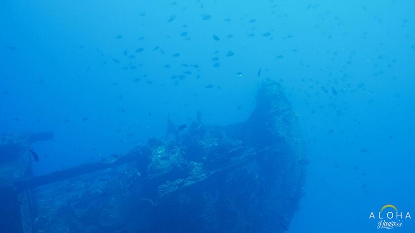 atlantis42
