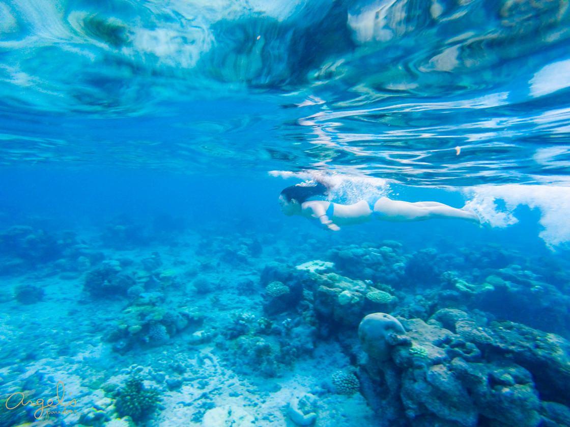 SnorkelingG0031929