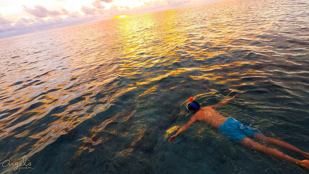 Snorkeling100_0490