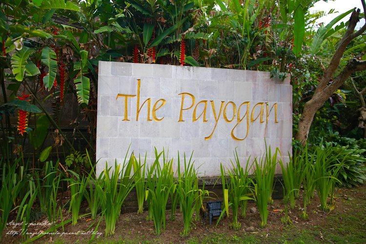 payoganIMG_8090