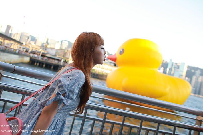 【香港尖沙咀】趕上黃色鴨鴨熱潮,前進尖沙咀吃喝玩樂!♥