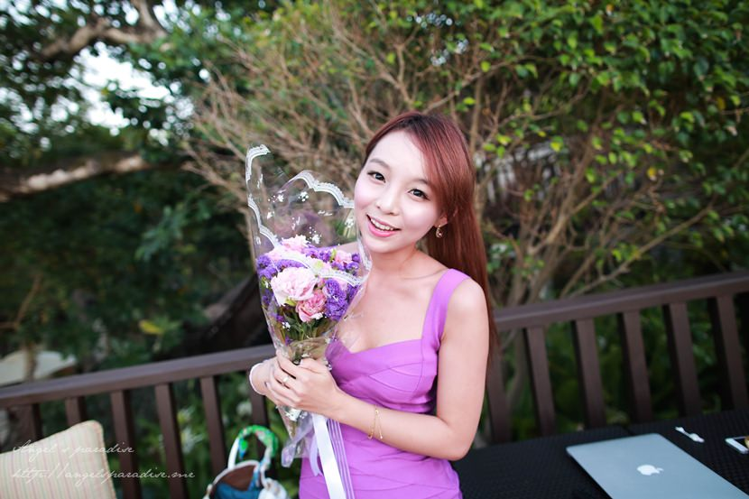 海昌purple-016