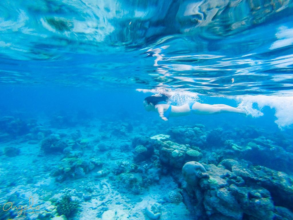 SnorkelingG0031928